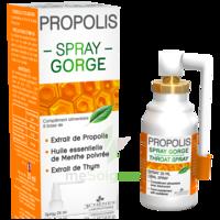 3 Chenes Propolis Spray Gorge Fl/25ml à Moirans