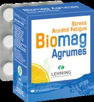 Lehning Biomag Comprimés à Croquer Agrumes B/90 à Moirans