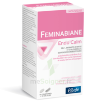 Pileje Feminabiane Endo'calm Comprimés + Gélules B/60+30 à Moirans