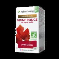 Arkogélules Vigne Rouge Bio Gélules Fl/45 à Moirans