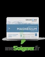 GRANIONS DE MAGNESIUM 3,82 mg/2 ml S buv 30Amp/2ml à Moirans