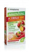 Arkovital Acérola 1000 Comprimés à Croquer B/30 à Moirans