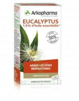 Arkogélules Eucalyptus Gélules Fl/45 à Moirans