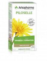 Arkogélules Piloselle Gélules Fl/45 à Moirans
