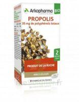 Arkogélules Propolis Bio Gélules Fl/45 à Moirans
