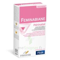 Pileje Feminabiane Périnatal 28 Gélules Blanches Et 28 Gélules Jaunes à Moirans