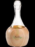 DIFFUSEUR d'huiles essentielles FJORD à Moirans