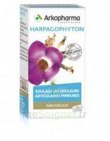 Arkogelules Harpagophyton Gélules Fl/45 à Moirans