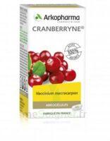 Arkogélules Cranberryne Gélules Fl/45 à Moirans