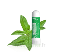 Puressentiel Respiratoire Inhaleur Respiratoire aux 19 Huiles Essentielles - 1 ml à Moirans