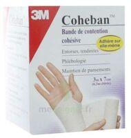 Coheban, Bleu 3 M X 7 Cm à Moirans
