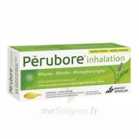 PERUBORE Caps inhalation par vapeur inhalation Plq/15 à Moirans