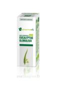 Huile essentielle Bio Eucalyptus Globuleux à Moirans