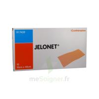 JELONET, 10 cm x 40 cm , bt 10 à Moirans