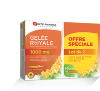 Forte Pharma Gelée Royale 1000 Mg Solution Buvable 2*b/20 Ampoules/10ml à Moirans