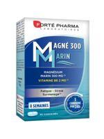 Magné 300 Marin (2 mois) à Moirans