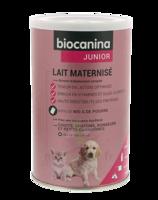 Biocanina Lait Poudre Maternisé B/400g à Moirans