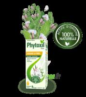 Phytoxil Toux Sans Sucre Sirop Adulte Enfant +2 Ans Fl/120ml à Moirans