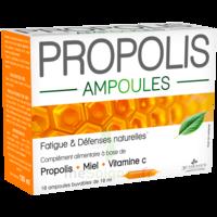 3 Chenes Propolis Solution Buvable 10 Ampoules/10ml à Moirans